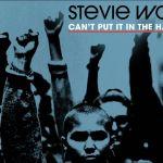 Forever Stevie